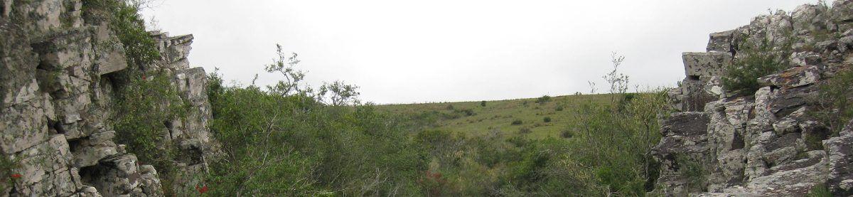 Observatorio del agua en Uruguay